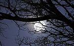 full-moon-100172346
