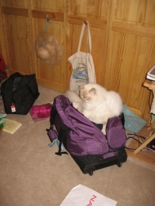 RileyPacking